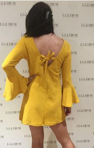 Mustard Flared Sleeved Dress back